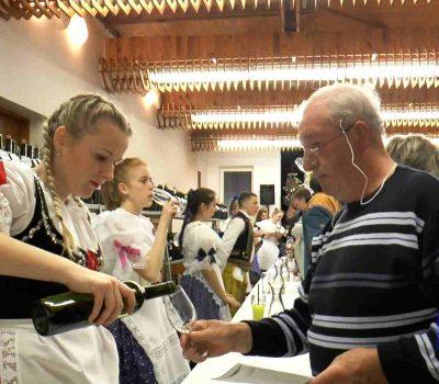 Videoreportáž – Výstava vín 2017